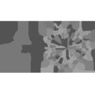 Tlv_municipality_logo
